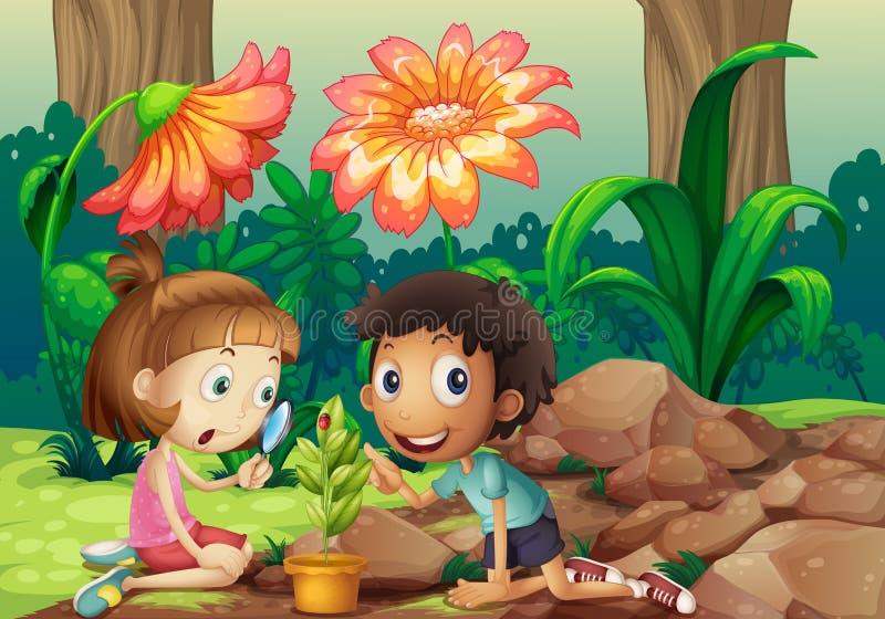 Uma menina e um menino que olham a planta com uma lupa ilustração stock