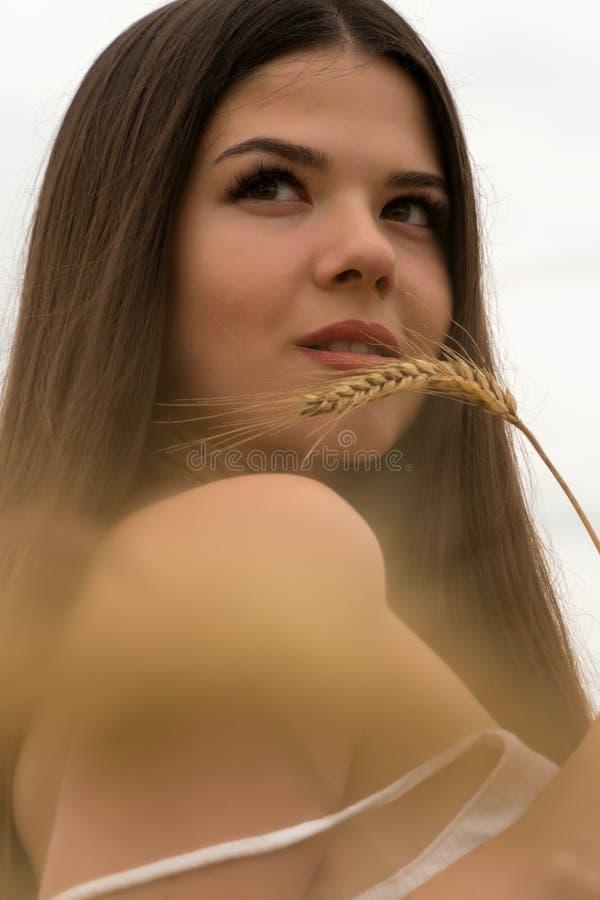 Uma menina em um terno branco do verão está estando em um campo de trigo A menina está guardando as orelhas do trigo em suas mãos imagens de stock
