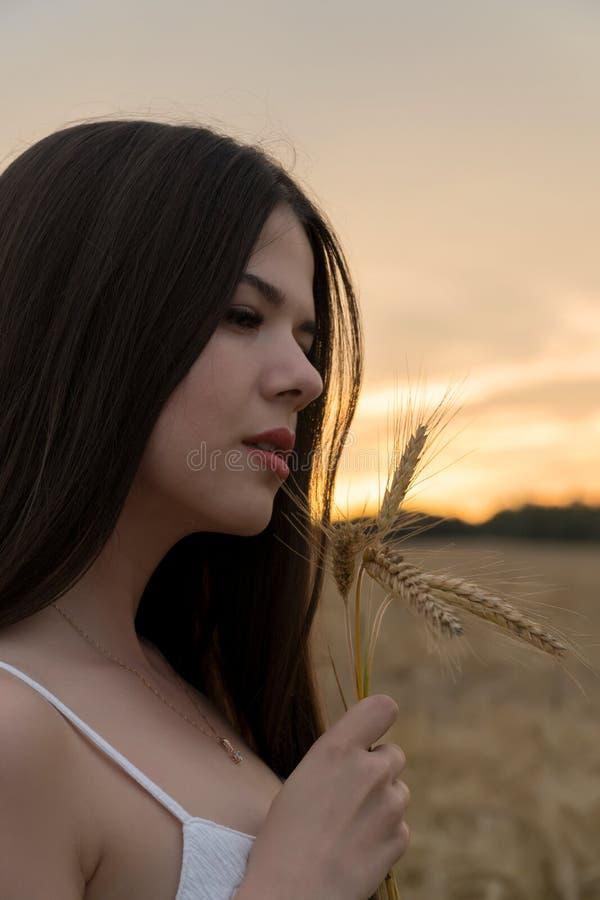 Uma menina em um terno branco do verão está estando em um campo de trigo A menina está guardando as orelhas do trigo em suas mãos imagens de stock royalty free