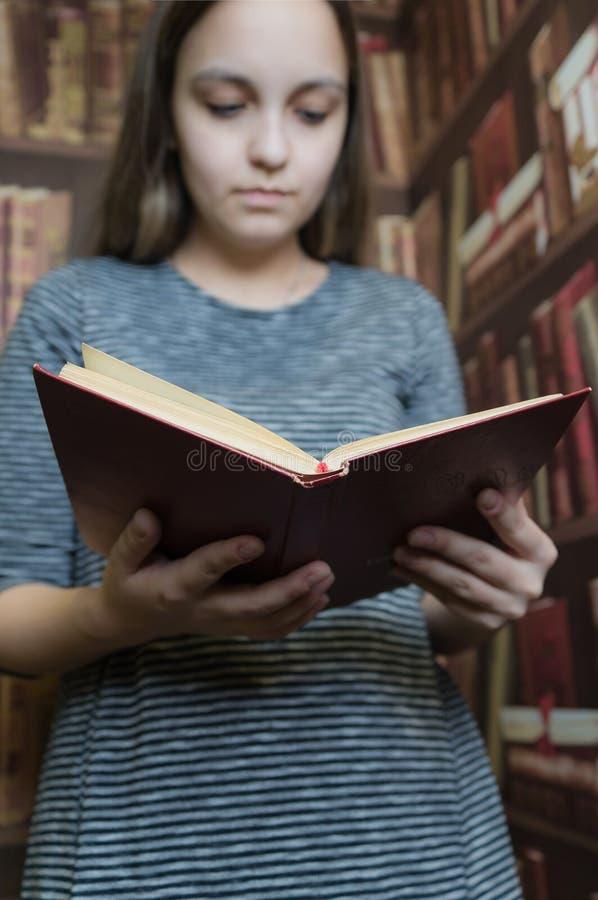 Uma menina em um vestido cinzento que lê um livro na biblioteca Foco macio fotos de stock royalty free