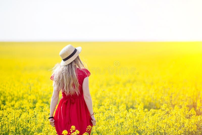 Uma menina em um vestido vermelho longo que admira o alvorecer ou o por do sol no campo amarelo brilhante imagem de stock
