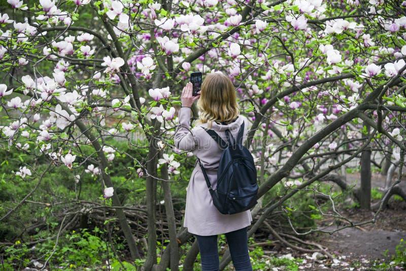 Uma menina fotografa flores em seu telefone celular Ukreina imagem de stock royalty free