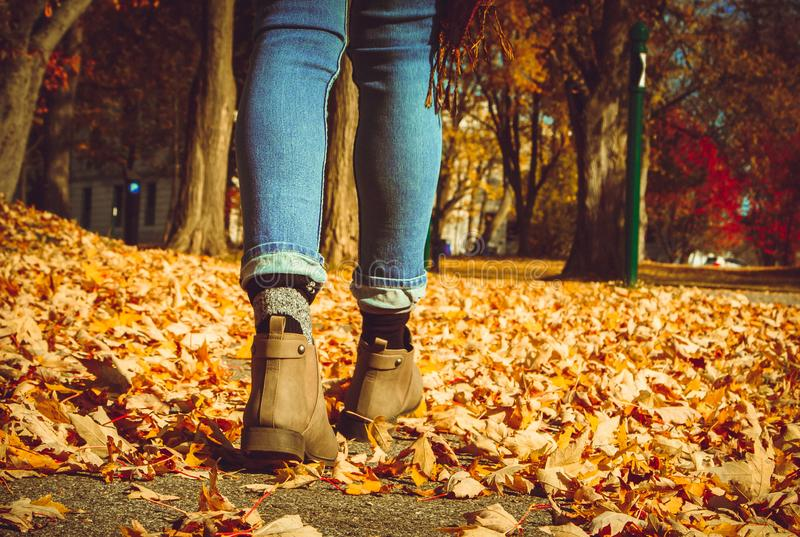 Uma menina que anda na folha no outono imagens de stock royalty free