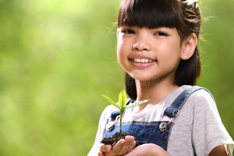 Uma menina que guarda uma planta nova em suas mãos com uma esperança do bom ambiente, foco seletivo na planta foto de stock