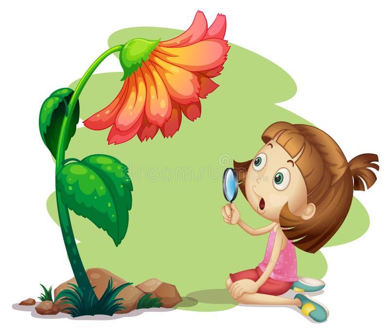 Uma menina que guarda uma lupa sob uma flor ilustração stock