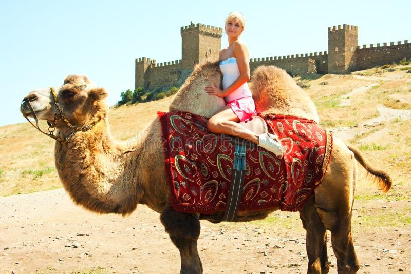 Uma menina que monta um camelo imagens de stock