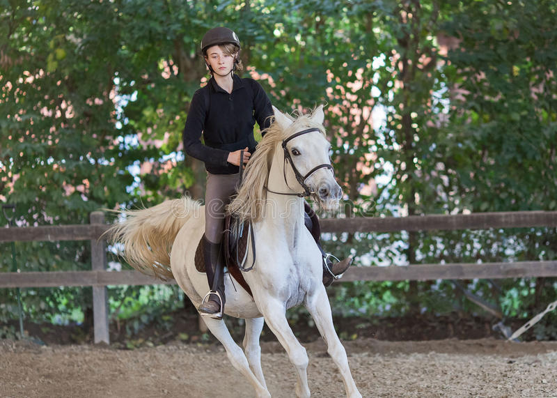 Uma menina que monta um cavalo branco árabe imagens de stock royalty free