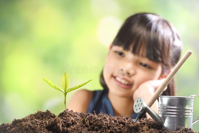 Uma menina que planta a planta nova no solo com uma esperança do bom ambiente fotografia de stock royalty free