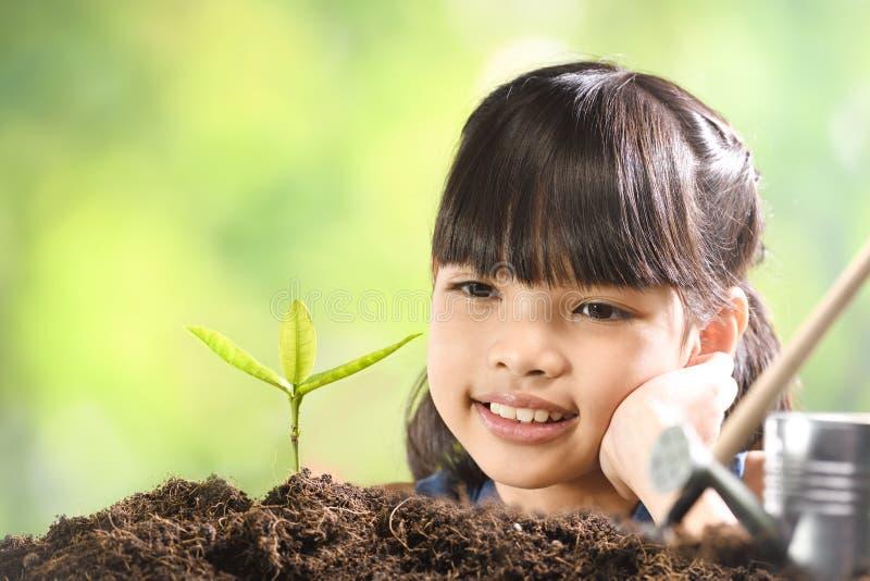 Uma menina que planta a planta nova no solo com uma esperança do bom ambiente imagens de stock royalty free