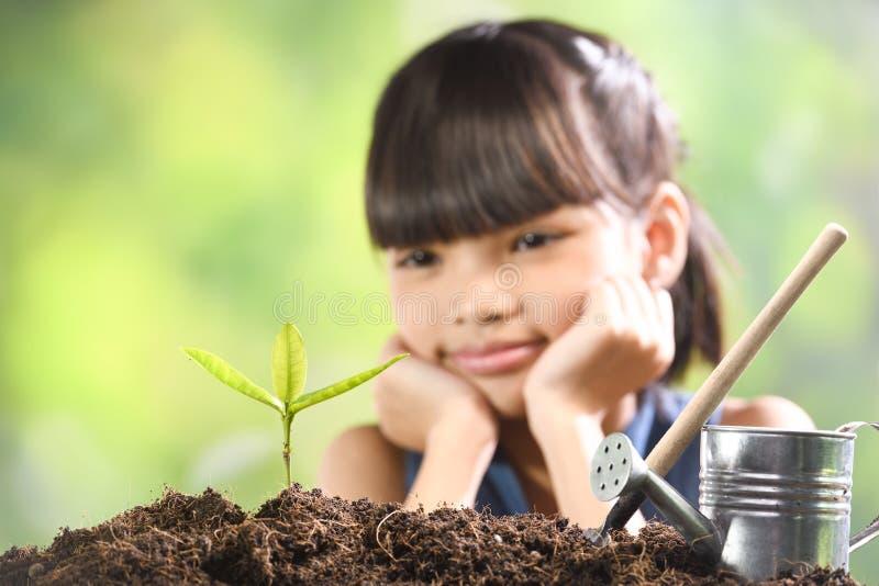 Uma menina que planta a planta nova no solo com uma esperança do bom ambiente imagens de stock