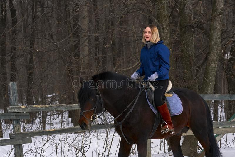 Uma moça com cabelo branco aprende montar um cavalo A menina começada recentemente praticar o equestrianism A menina está receosa imagens de stock royalty free