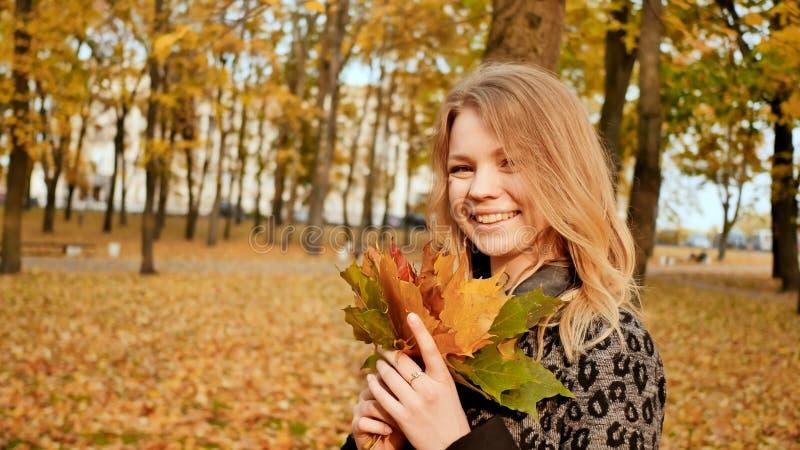 Uma moça que levanta alegremente na câmera com um ramalhete das folhas coloridas Ande no parque da cidade no outono foto de stock