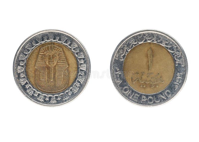 Uma moeda de libra egípcia imagem de stock royalty free
