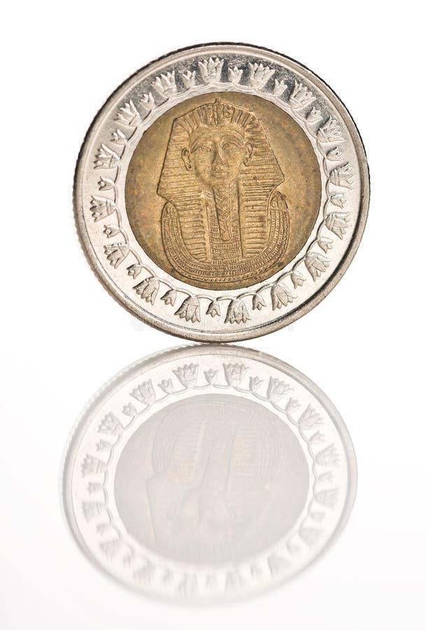 Uma moeda de libra egípcia imagem de stock
