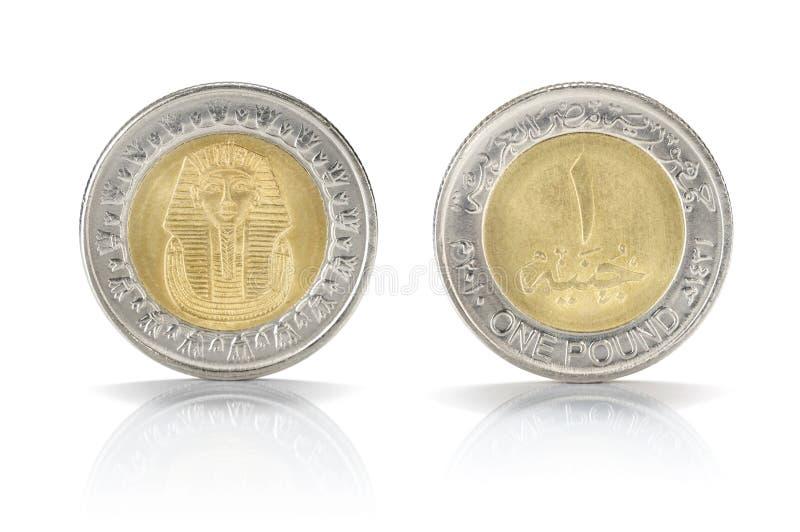 Uma moeda de libra egípcia foto de stock royalty free