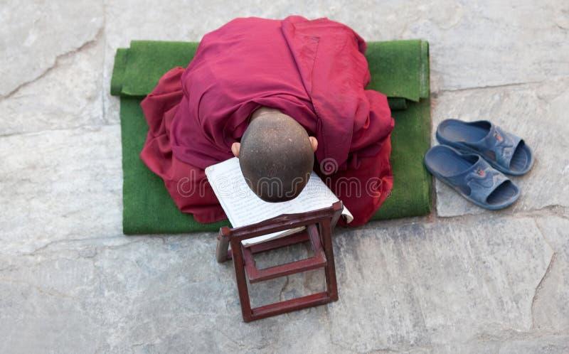 Uma monge budista pequena imagem de stock
