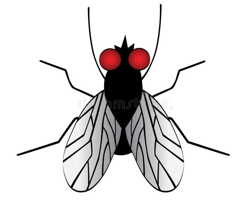 Uma mosca ilustração do vetor