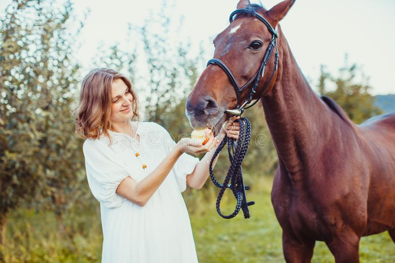 Uma mulher alimenta um cavalo fotografia de stock royalty free