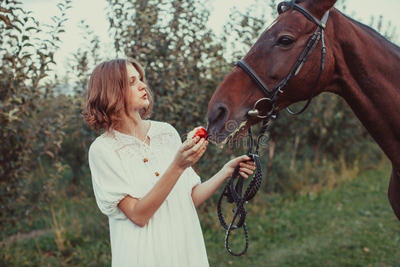 Uma mulher alimenta um cavalo imagens de stock royalty free