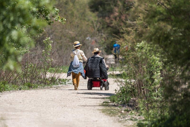 Uma mulher anda com um homem na cadeira de rodas por natureza foto de stock
