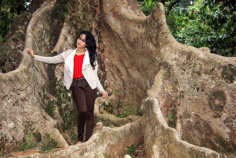 Uma mulher bonita sob a árvore grande fotos de stock royalty free