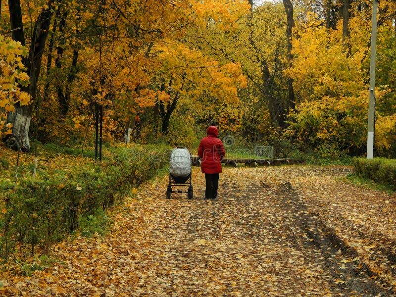 Uma mulher com uma criança anda no parque do outono imagens de stock