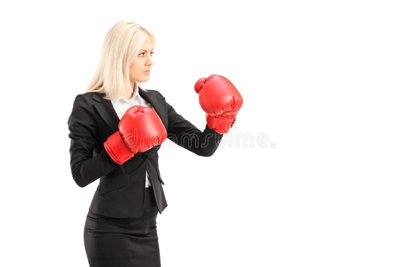 Uma mulher de negócios nova com as luvas de encaixotamento vermelhas prontas para lutar fotografia de stock
