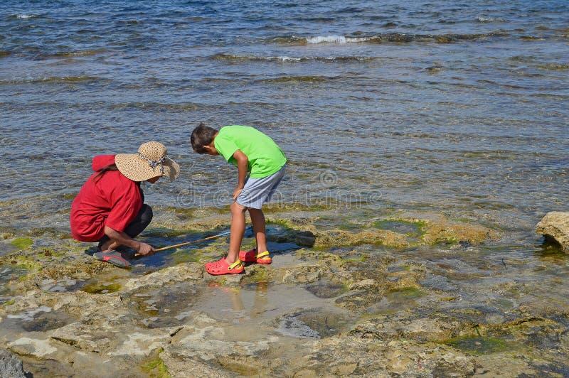 Uma mulher e um menino que procuram caranguejos nas rochas imagens de stock