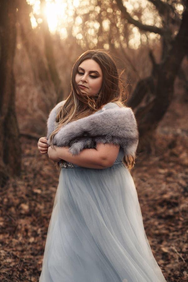 Uma mulher grande, bonita em um vestido azul foto de stock