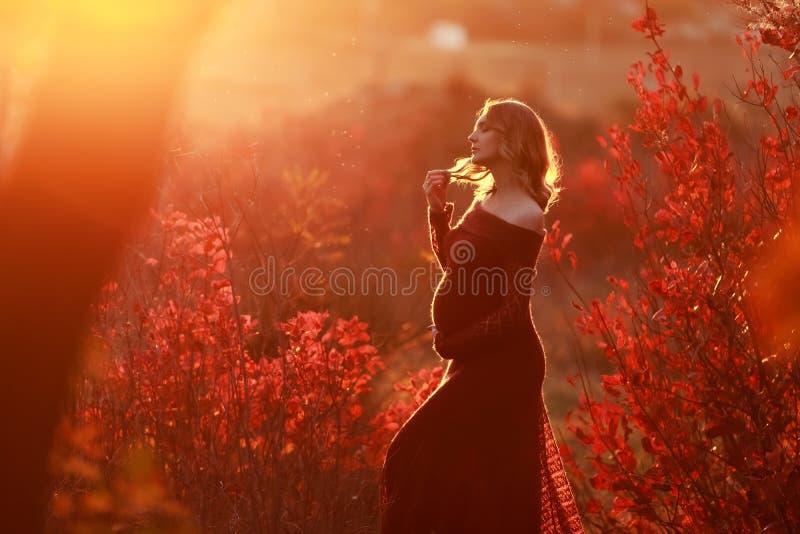 Uma mulher gravida bonita com cabelo louro no vestido vermelho longo imagem de stock