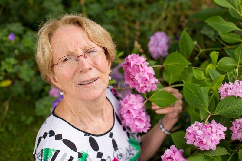 Uma mulher idosa agradável está levantando na frente das flores cor-de-rosa bonitas fotos de stock royalty free