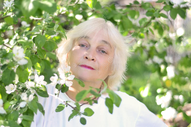 Uma mulher idosa perto da árvore de florescência imagens de stock royalty free
