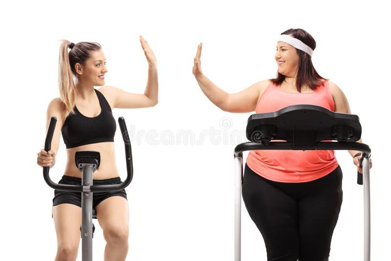 Uma mulher magro e uma mulher excesso de peso que exercita e alta-fiving fotografia de stock royalty free