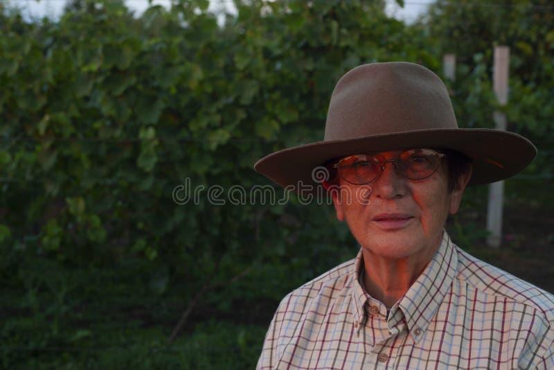 Uma mulher mais idosa olha o por do sol na exploração agrícola imagens de stock