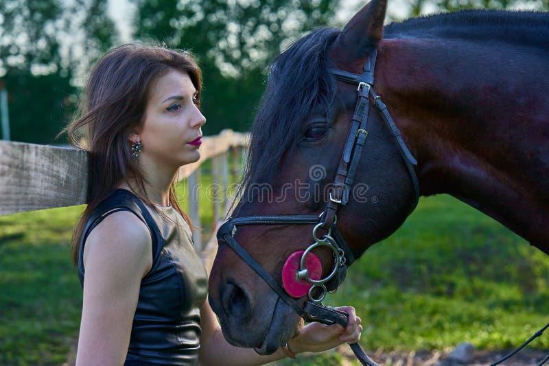 Uma mulher moreno nova em um vestido preto comunica-se com um cavalo marrom escuro em uma noite ensolarada do ver?o Nivelando a c fotografia de stock royalty free
