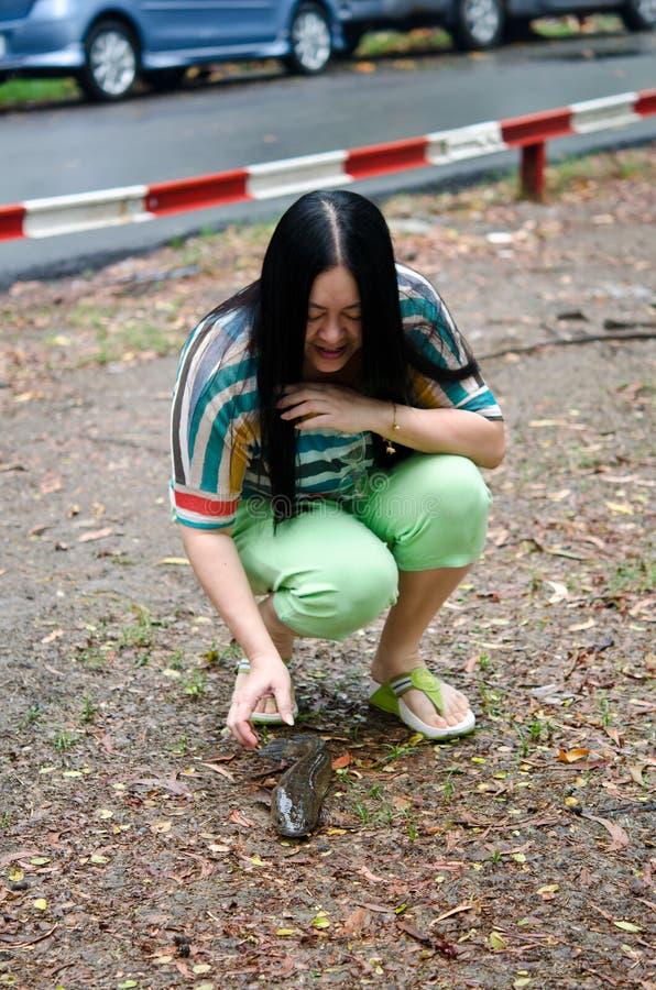 Uma mulher que conserva um peixe-gato na terra fotos de stock