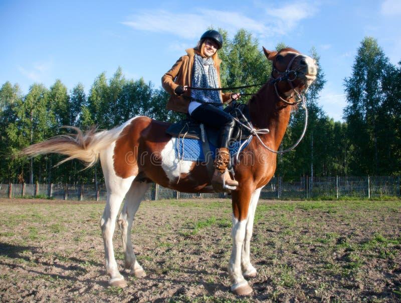 Uma mulher que monta um cavalo fotografia de stock