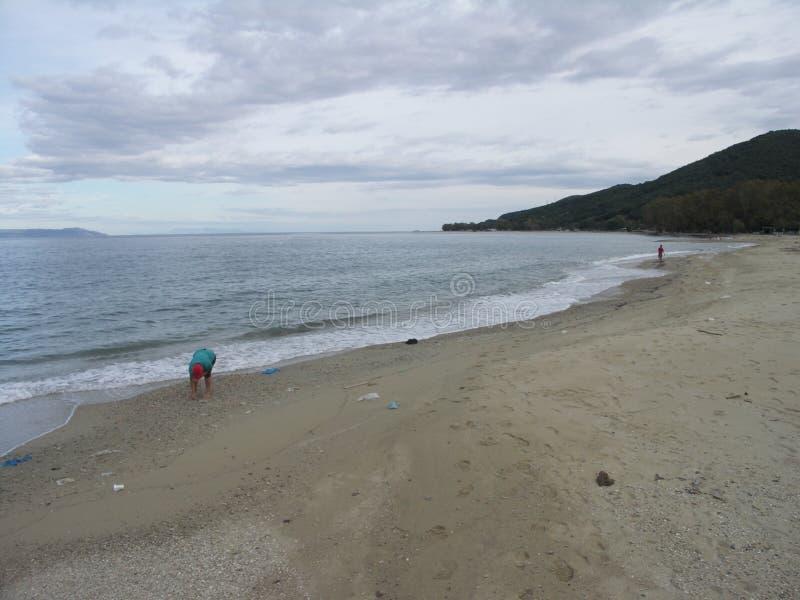 Uma mulher que recolhe shels na praia quase vazia fotos de stock