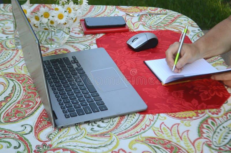 Uma mulher superior está comendo bagas frescas e o trabalho autônomo em um portátil em um jardim do verão fotos de stock royalty free