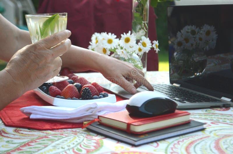 Uma mulher superior está comendo bagas frescas e o trabalho autônomo em um portátil em um jardim do verão fotografia de stock royalty free