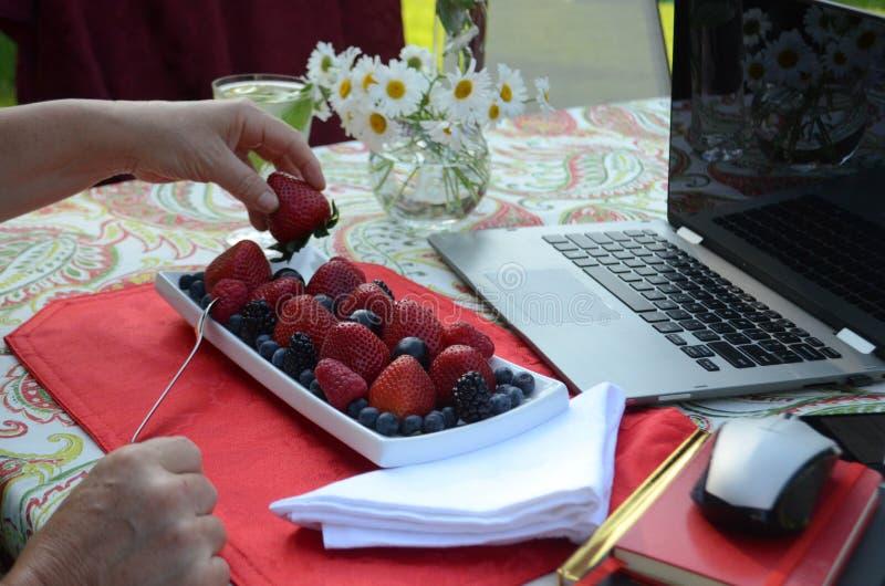Uma mulher superior está comendo bagas frescas e o trabalho autônomo em um portátil em um jardim do verão imagens de stock