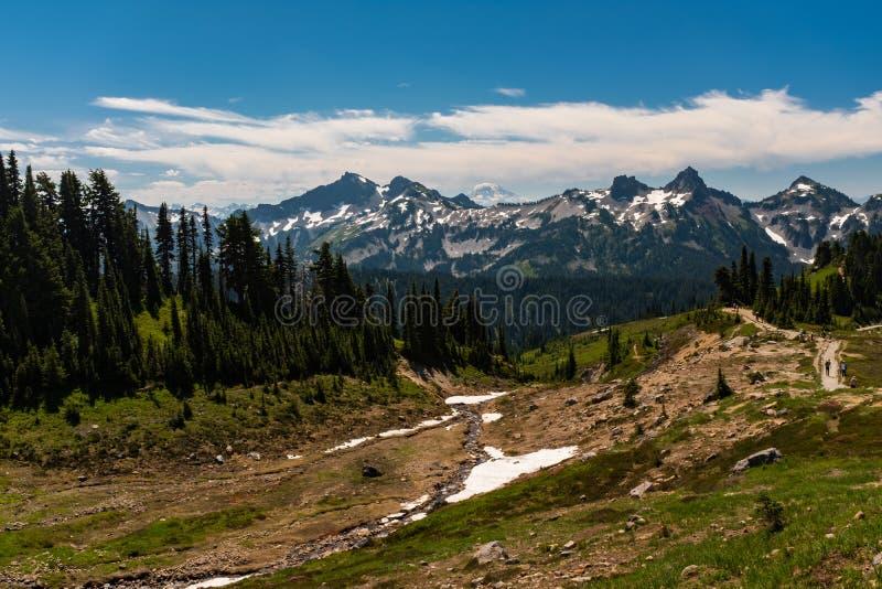 Uma neve tampou a cordilheira no tempo de mola com uma floresta de pinheiros verdes luxúrias nos caminhantes do primeiro plano no foto de stock
