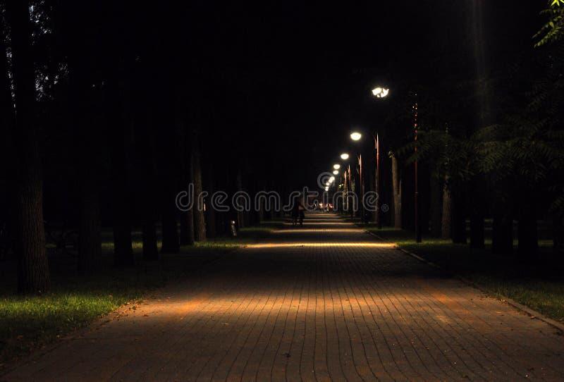 Uma noite no parque Bancos de madeira atrasados, aleia Rússia fotos de stock