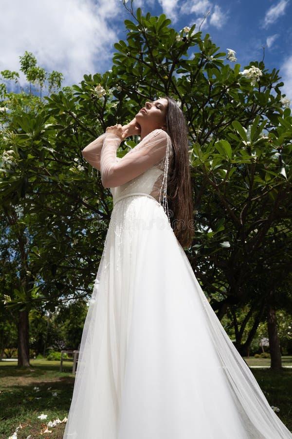 Uma noiva em um vestido branco está estando sob uma árvore tropical de florescência imagem de stock royalty free