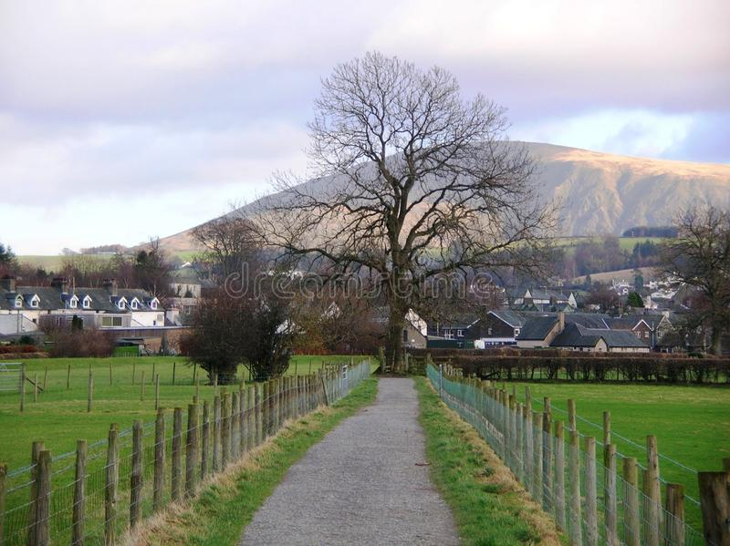 Uma opinião bonita Cat Bells os subúrbios da cidade, Cumbria, Inglaterra fotografia de stock royalty free