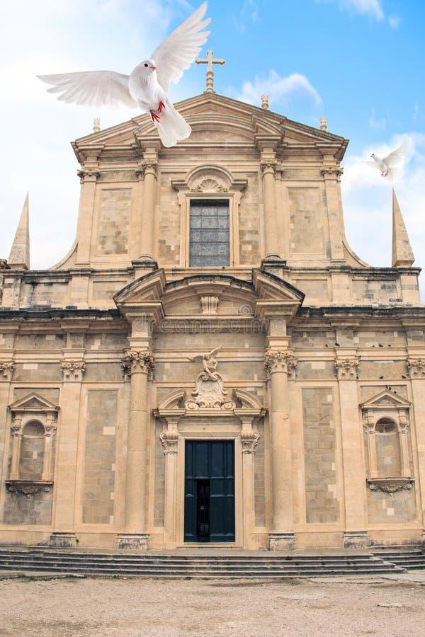 Uma opinião bonita o pombo perto da igreja do jesuíta de St Ignatius na cidade histórica de Dubrovnik, Croácia foto de stock