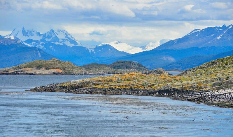 Uma opinião cênico Tierra del Fuego National Park, Argentina imagem de stock