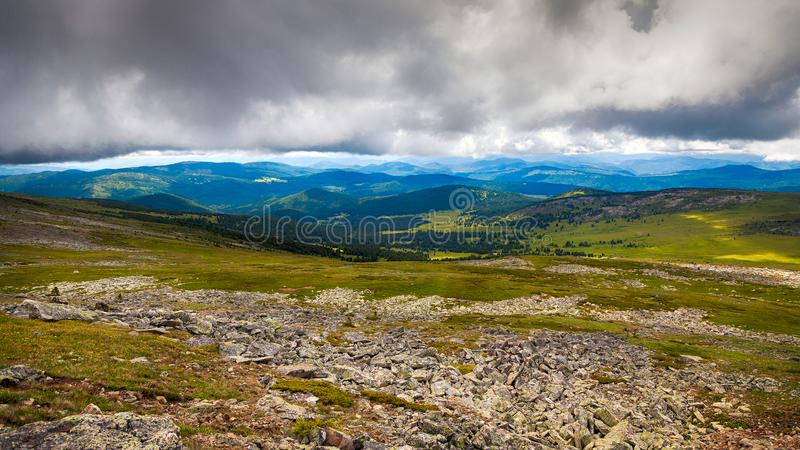 Uma opinião da paisagem da floresta verde bonita foto de stock