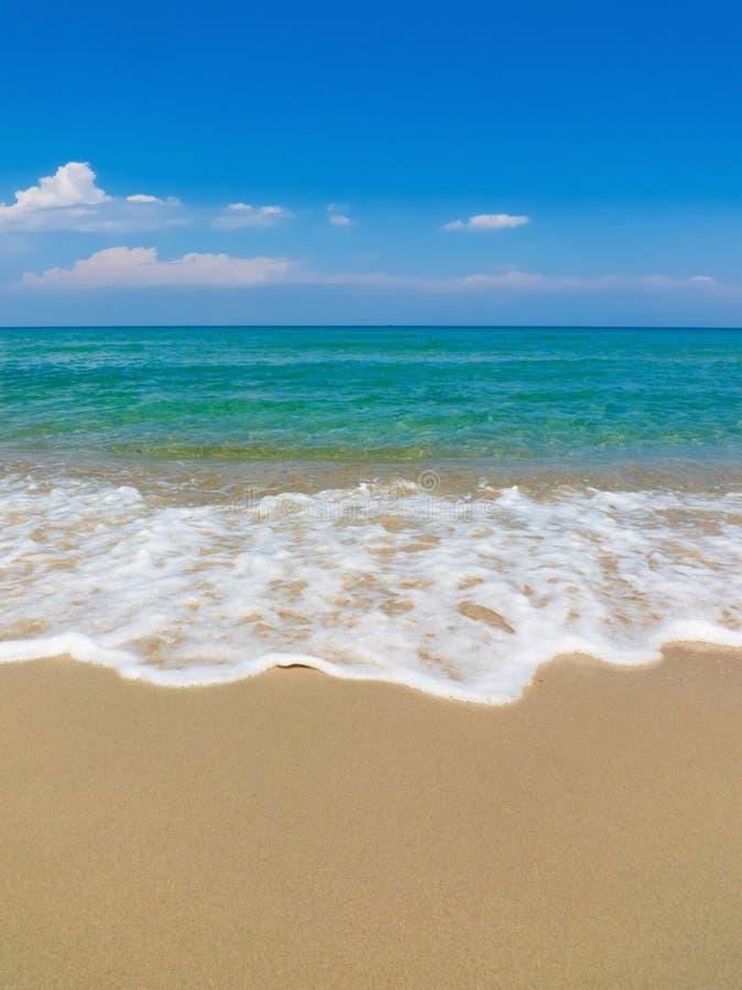 Download Praia de Sun do mar foto de stock. Imagem de console - 29835546