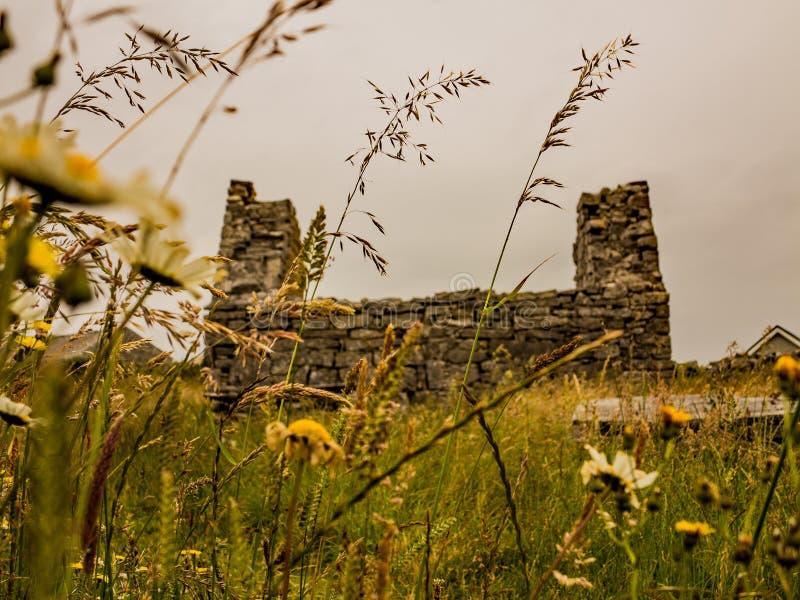 Uma opinião do olho dos sem-fins das ruínas antigas da igreja no campo irlandês imagem de stock